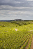 Village and vineyards of Sancerre Stock Image
