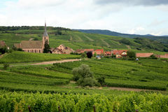 Village with vineyrad - France, Alsace Royalty Free Stock Photos