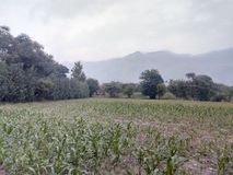 Village wartair Distt Malakand Pakistan. Natural beauty of universe Stock Images