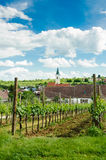 Village in Weinviertel Royalty Free Stock Photos