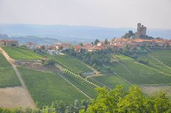 Village vineyards Langhe serralunga Alba. Vineyards winery in Alba barolo country serralunga village Piemonte royalty free stock photo