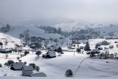Village in winter. Winter landscape;Trees covered in snow Stock Images
