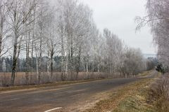 Village winter road. Iced trees near the road. winding country road stock photography