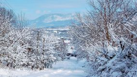 Village In Winter Scene, Mountain On The Background royalty free stock photography