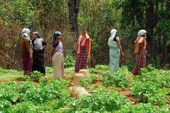 Village women at Northeast India Royalty Free Stock Image