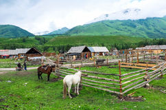 A Village in Xinjiang Royalty Free Stock Photos