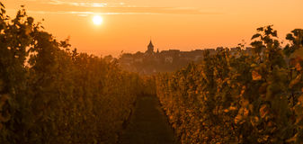 The Village of Zellenberg at sunrise,Alsace vineyard, France Royalty Free Stock Photo