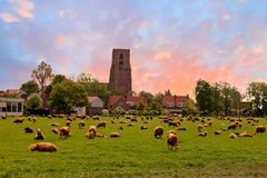 The village Zunderdorp near Amsterdam in the Netherlands. At sunset Stock Image