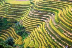 Villageois et terrasses Images libres de droits