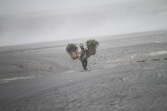 Villager bring grass. For his animal trough caldera and sandstorm at desert Royalty Free Stock Images