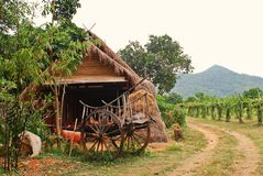 Villager house;Thai style. Way of life Stock Image