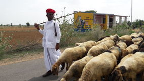 Villager man. Village man has go for a animal food Stock Images