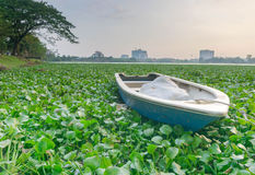 Villager wooden boat with sunset background at Crocodile Lake. Puchong,Malaysia - 13 March 2016: Villager wooden boat with sunset background at Crocodile Lake Stock Image