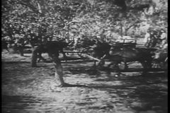 Villagers in horse carts and on foot traveling through forest stock video footage