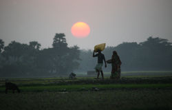 Villagers return home after a hard day on the rice fields Stock Images