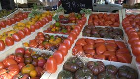 Villagers selling different types of tomatoes on local vegetable market, trade. Stock footage stock footage