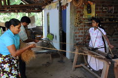 Villagers from the suburbs of Kandy engaged in the production of fiber. Stock Photography
