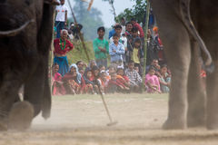 Villagers watching a polo tournament, during polo game, Thakurdwara, Bardia, Nepal Stock Photos