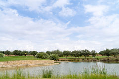 Villages Golf Panoramica Royalty Free Stock Images