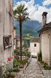 Villages in Verzasca valley Stock Image