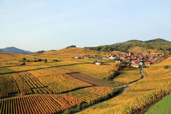 Villaggio alsaziano nella vigna Fotografia Stock