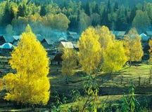 Villaggio Baihaba, xinjiang, porcellana di autunno immagini stock