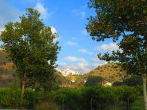 Villaggio bianco di Alora Fotografia Stock Libera da Diritti