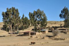 Villaggio boliviano sulle rive del Titicaca Fotografie Stock