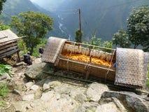Villaggio Chipla superiore nel Nepal Immagine Stock Libera da Diritti