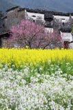 Villaggio cinese Immagine Stock Libera da Diritti