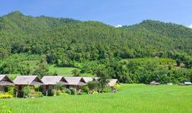 Villaggio con il campo verde Fotografia Stock Libera da Diritti