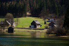 Villaggio con il fondo del pino e del lago immagini stock