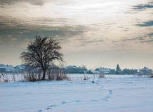 Villaggio con un albero Fotografie Stock Libere da Diritti