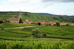 Villaggio con vineyrad - Francia, l'Alsazia Fotografie Stock Libere da Diritti