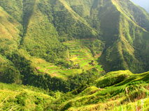Villaggio dei terrazzi del riso di Ifugao fotografie stock libere da diritti