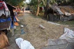 Villaggio del bengalese Immagine Stock