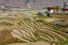 Villaggio del Bhutanese Fotografia Stock Libera da Diritti