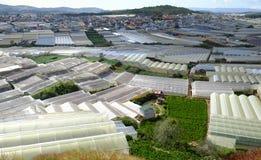 Villaggio del fiore di Dalat, Vietnam, agricoltura alta tecnologia Fotografia Stock Libera da Diritti