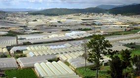 Villaggio del fiore di Dalat, Vietnam, agricoltura alta tecnologia Immagini Stock Libere da Diritti