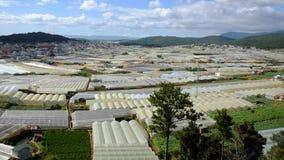 Villaggio del fiore di Dalat, Vietnam, agricoltura alta tecnologia Immagini Stock