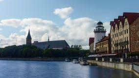 Villaggio del pesce nella città di Kaliningrad, Russia video d archivio