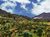 Villaggio del plateau di Dieng Immagine Stock Libera da Diritti