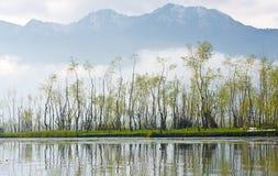 Villaggio dell'acqua, punto di vista da Srinagar Immagine Stock