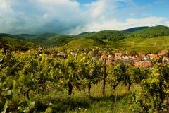 Villaggio dell'Alsazia nell'estate Fotografia Stock