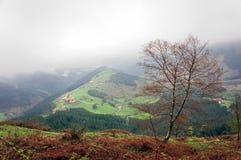 Villaggio della campagna con alcune case di campagna basche tipiche Immagini Stock