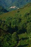 Villaggio della Corsica Fotografie Stock