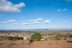 Villaggio della savana Immagini Stock
