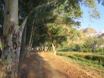 Villaggio di Alora Immagine Stock