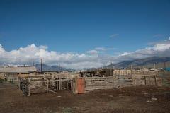 Villaggio di Altai nel deserto e cielo con le nuvole di estate Fotografia Stock Libera da Diritti