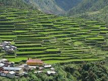 Villaggio di Batad Immagine Stock